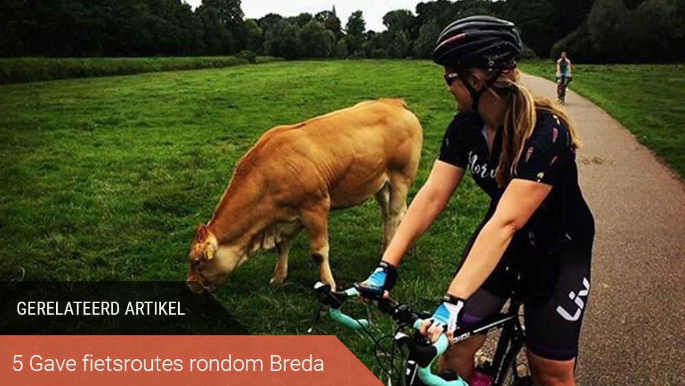 cobbles-wielrennen-fietsfiesta-breda-gerelateerd